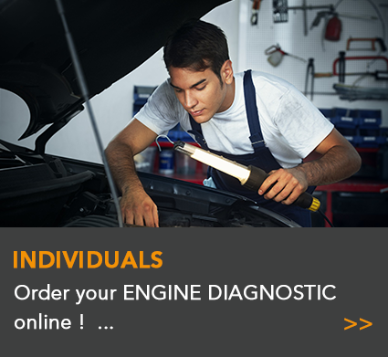 Engine Diagnostic for individuals